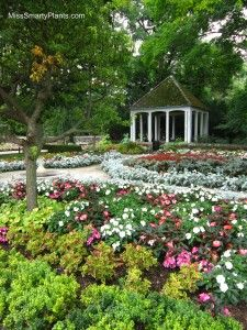 f76ad28322f956cc2d8f2093705a7e2c - Chinese Lantern Festival Boerner Botanical Gardens