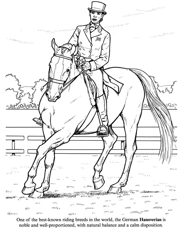 horse coloring page of hanoverian - Western Horse Coloring Pages