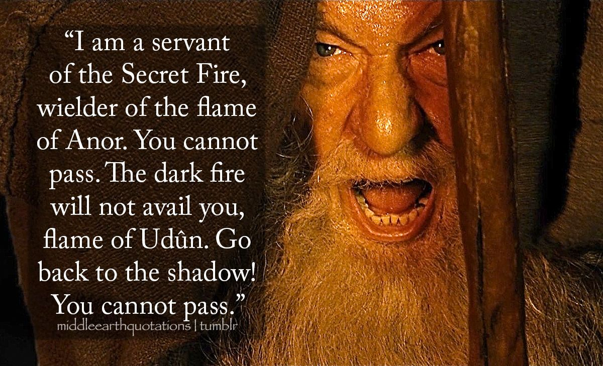 I Am A Servant Of The Secret Of Anor You Cannot Pass The Dark Fire Will Not Avail You Flame Of Udun Go Bac Lord Of The Rings Earth Quotes Tolkien