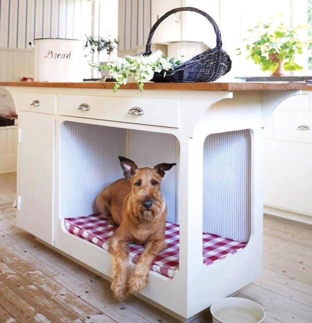 ides pour faire niche et couchette dintrieur pour animaux domestiques