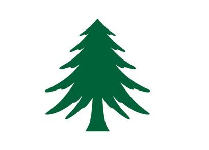 The Tree Flag Or Appeal To Heaven Flag Was One Of The Flags Used During The American Revolution Maritime Flags Flag Black Picture Frames