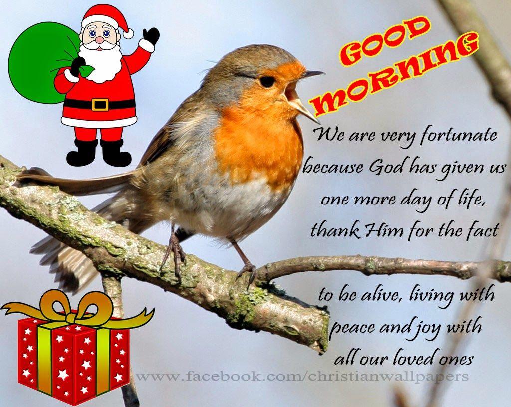 Good Morning Christmas Scrap Greetings Morneveng Days