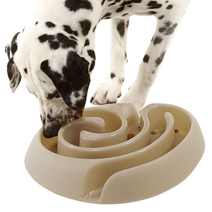 Maze Dog Food Bowl Slows Rapid Eating Dog Food Bowls Dog Food