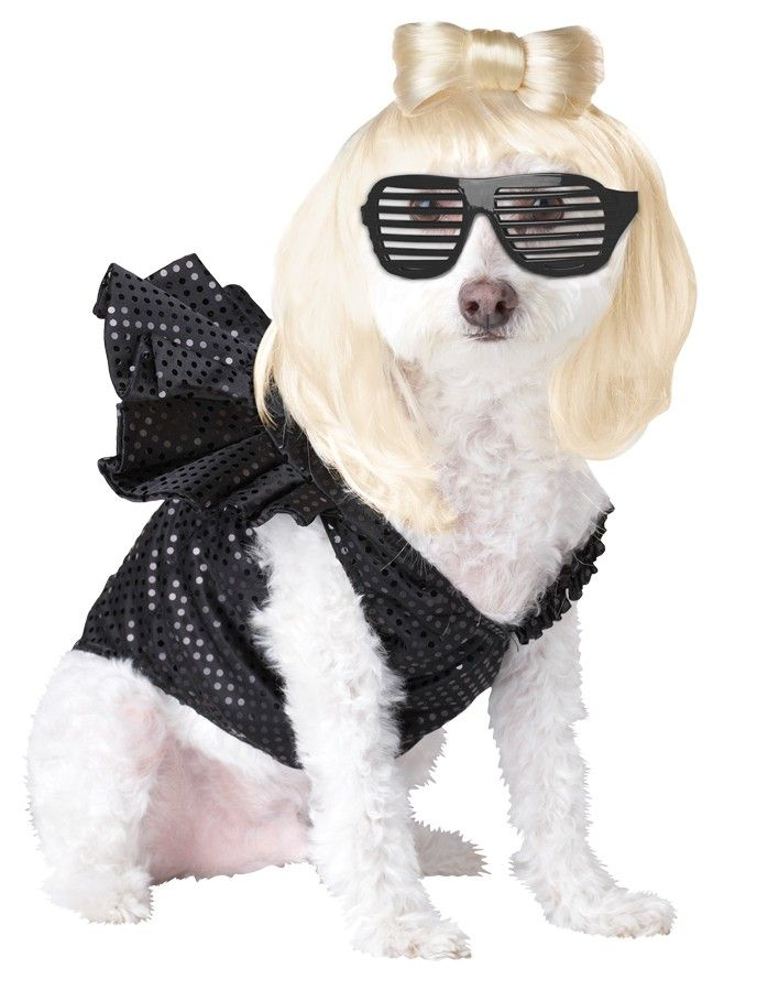Lady Dogga Pet Large