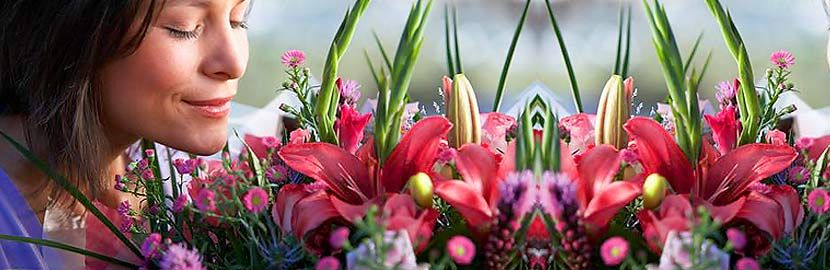 Flowers delivered - FREE flower delivery uk. Flowers by post by online florists. send flowers next or same… | Flower delivery uk. Flowers ...