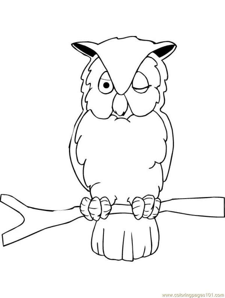 Owl Printable Coloring Page For Kids And Adults Owl Coloring