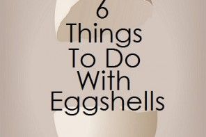 6 Things to Do With Eggshells