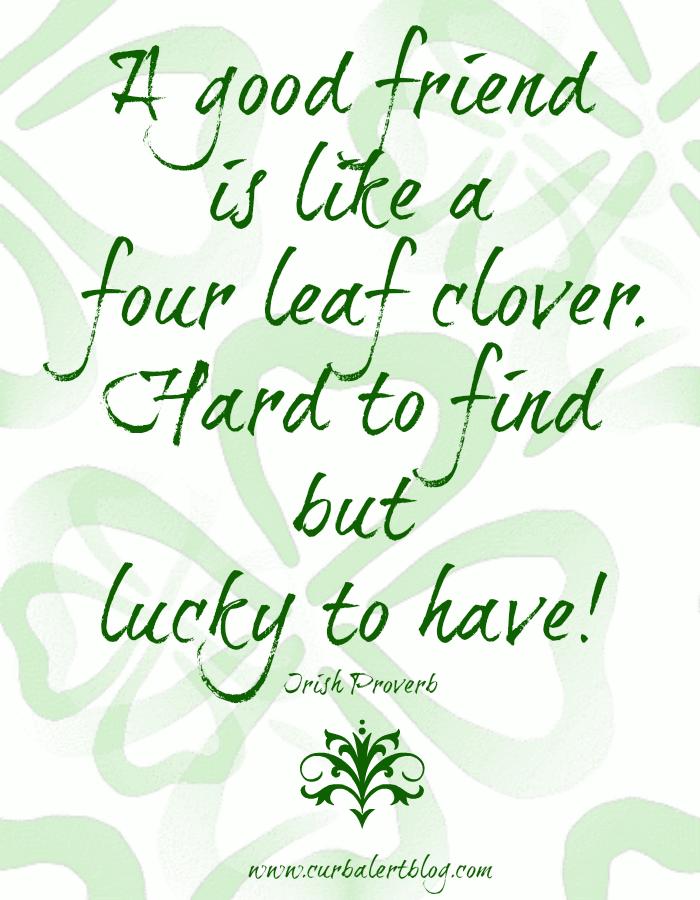 St Patricks Day Curb Alert St Patrick Frases Sabias