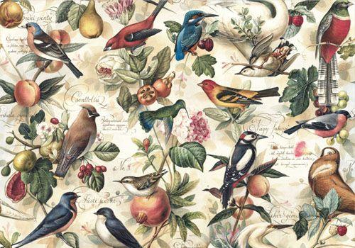 Bomo Art Bird Wrapping Paper