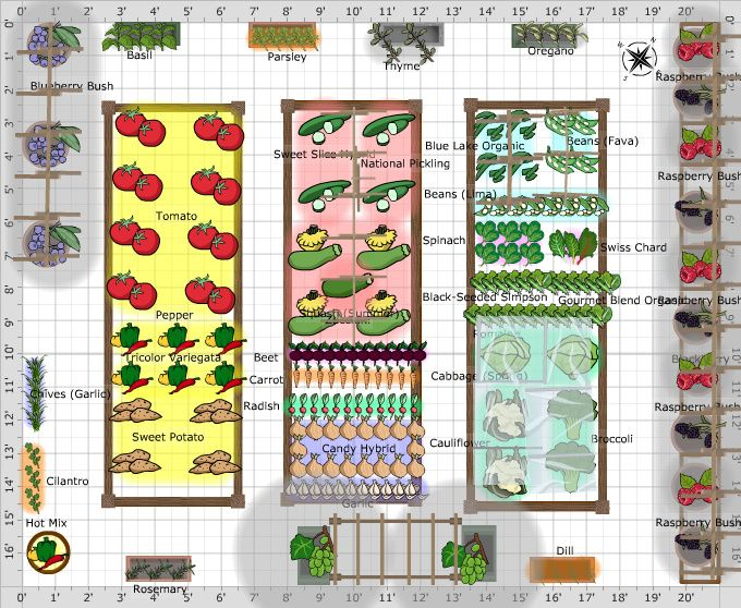 Garden plans kitchen garden potager garden planning for Kitchen garden design