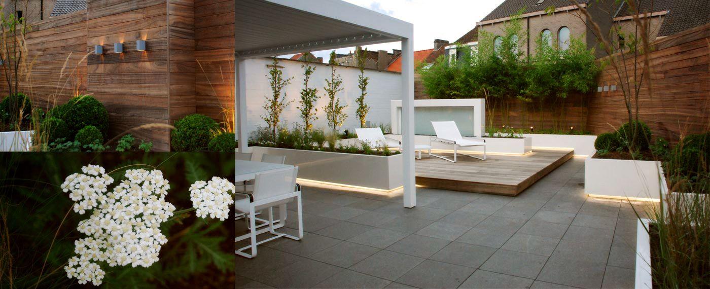 Sfeervolle moderne daktuin | Daktuin /tuin | Pinterest