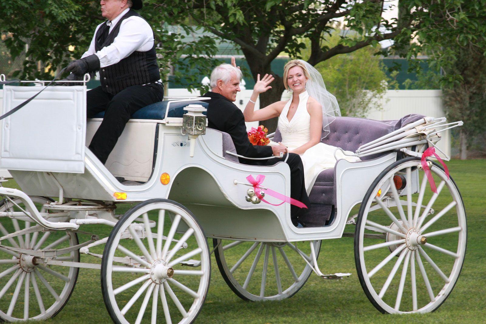 Horse Drawn Carriage At Secret Garden Wedding Center Dean Martin Drive Las Vegas