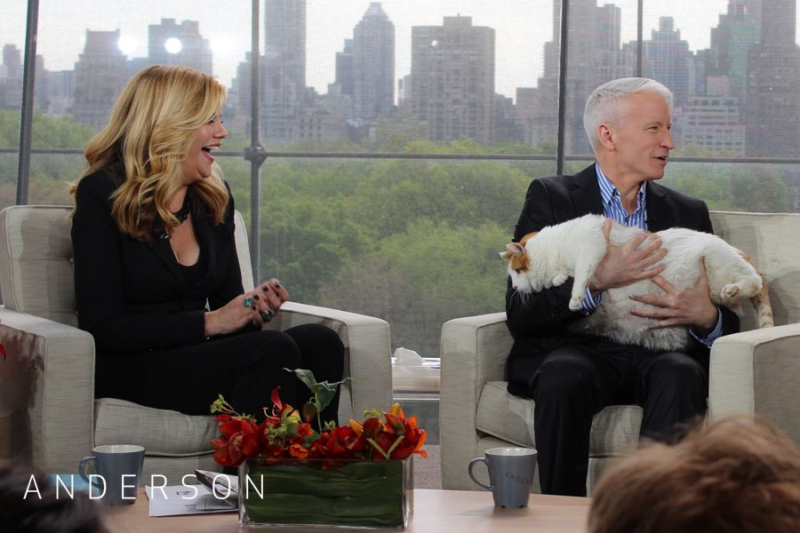 Meow, the 37lb cat. Anderson cooper, Couple photos, Couples