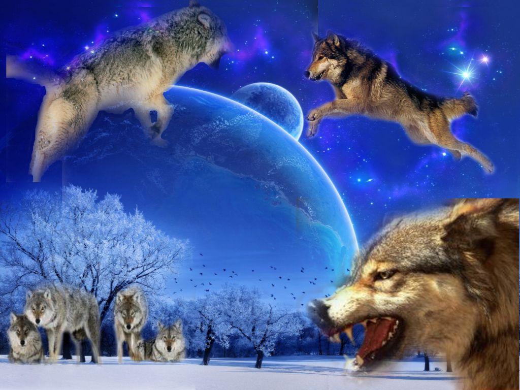 Сделать фото в рамку волка