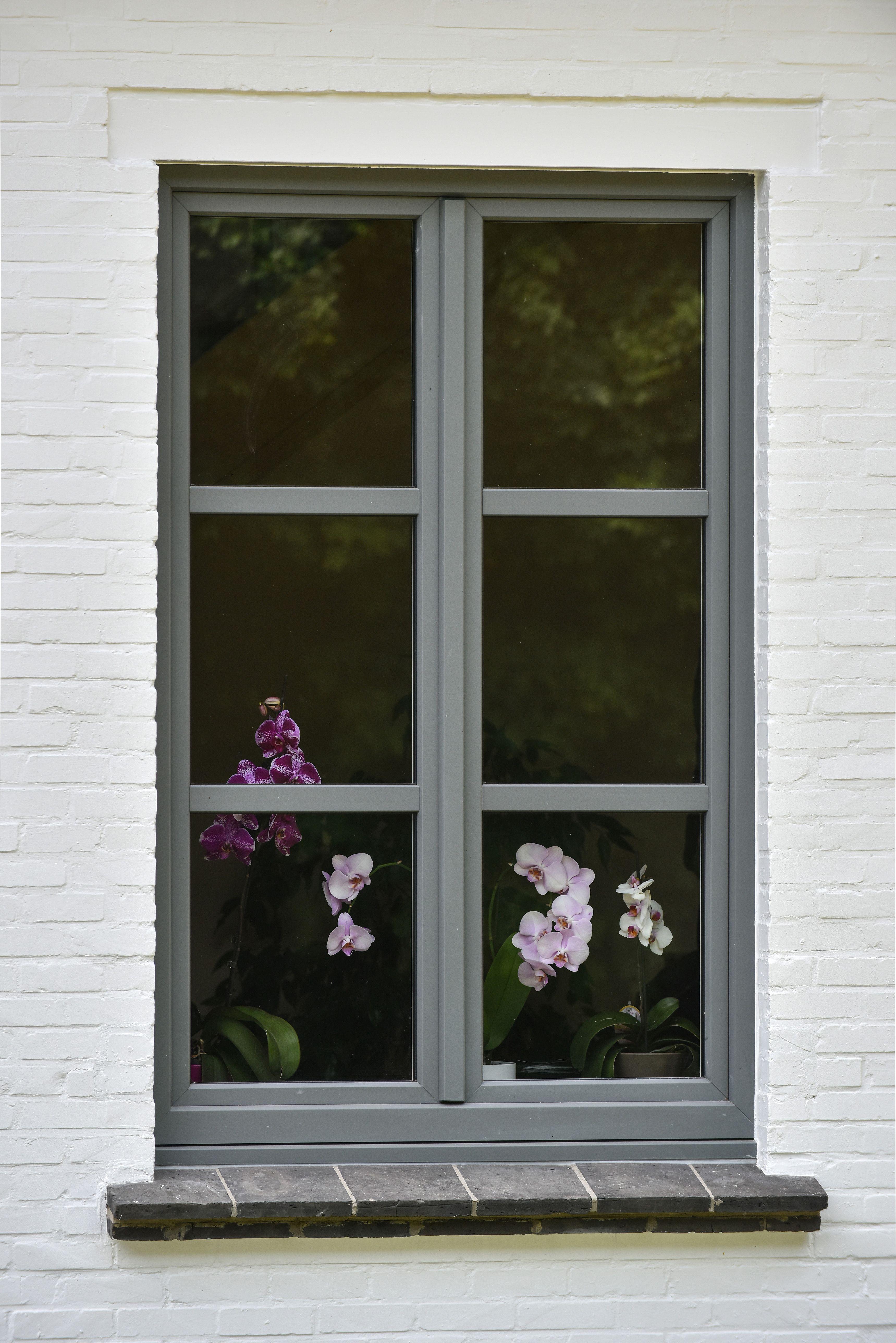 Realisation Pierret Des Orchidees Pour Donner De La Couleur Aux Fenetres Fenetre Idees Pour La Maison Fleury Les Aubrais