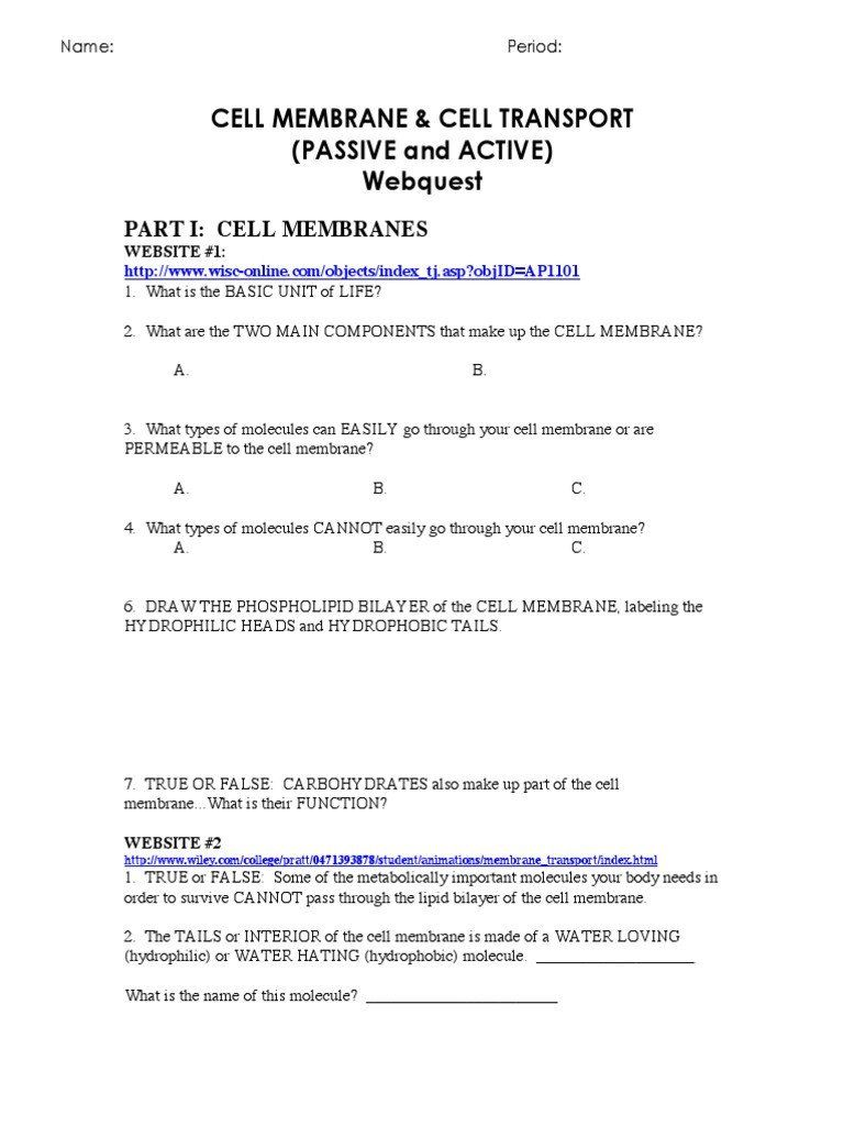 Cell Transport Worksheet Answers Cell Membrane And Transport Web Quest Osmosis In 2020 Cell Transport Worksheet Template Simplifying Rational Expressions