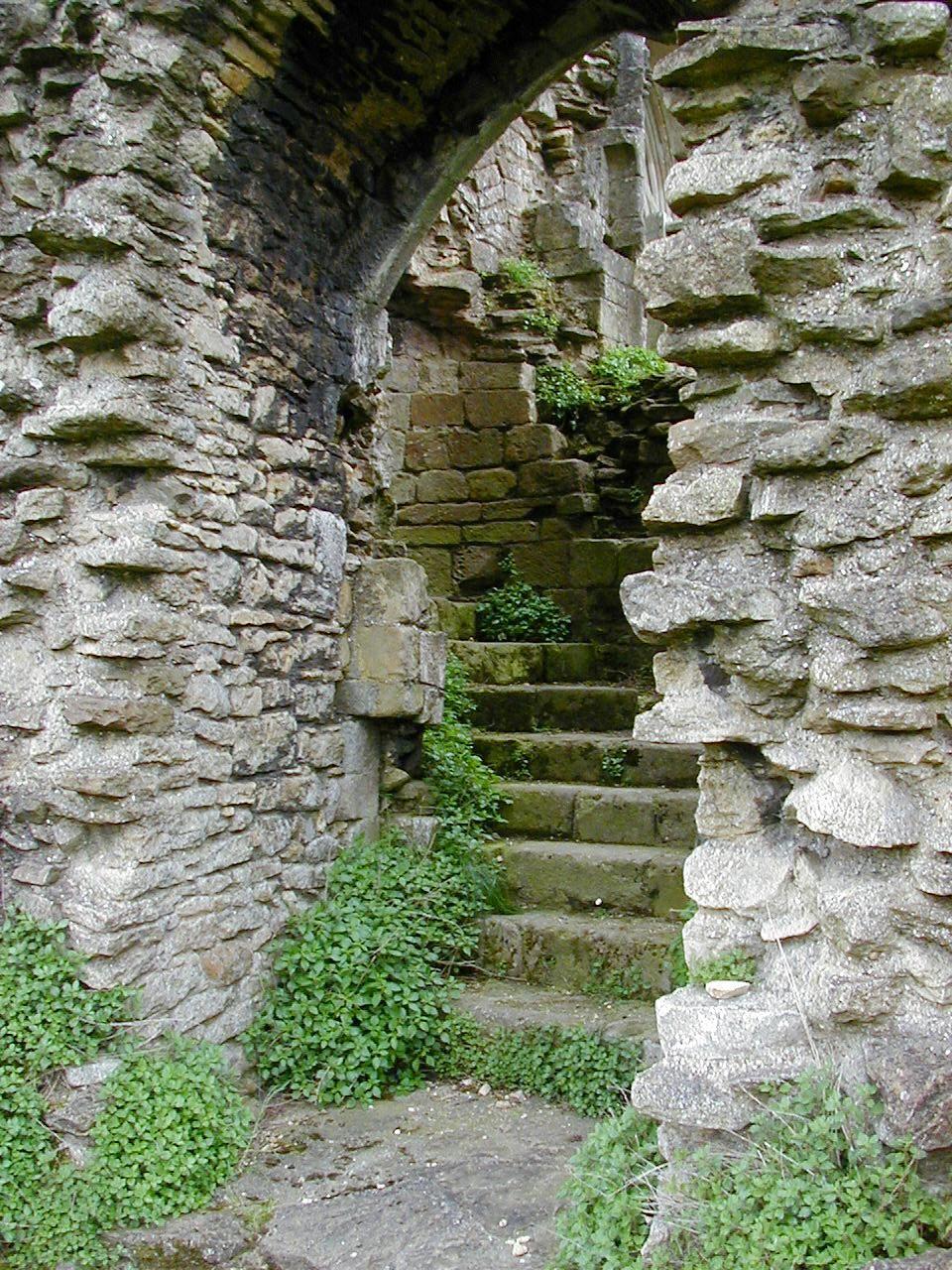 Steps, Kirkham Abbey, Wales