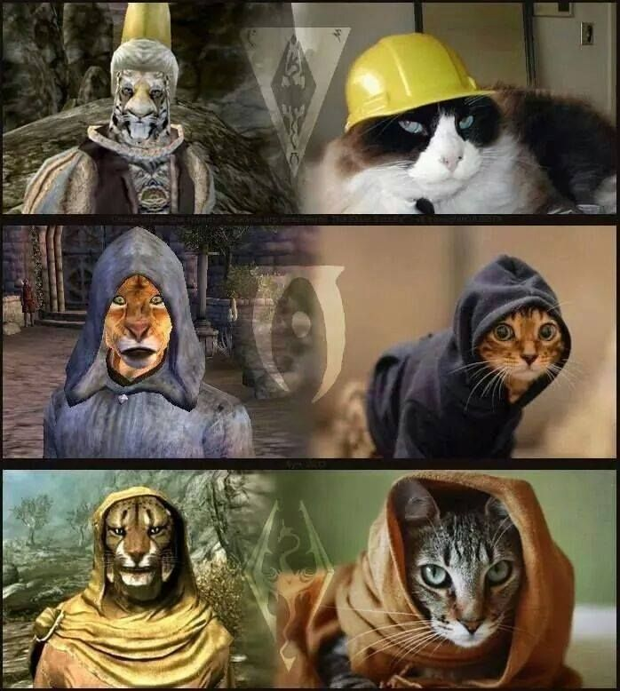 M'aiq the Liar!!!! They're  all him btw.