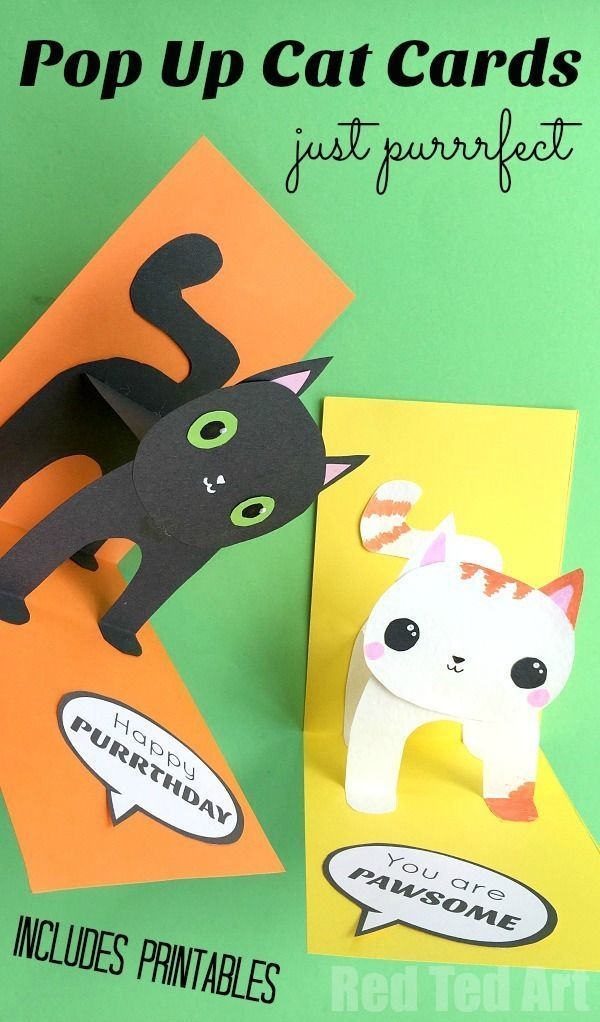 3d Cat Card Diy Red Ted Art Make Crafting With Kids Easy Fun Birthday Cards Diy Birthday Card Pop Up Cat Birthday Card