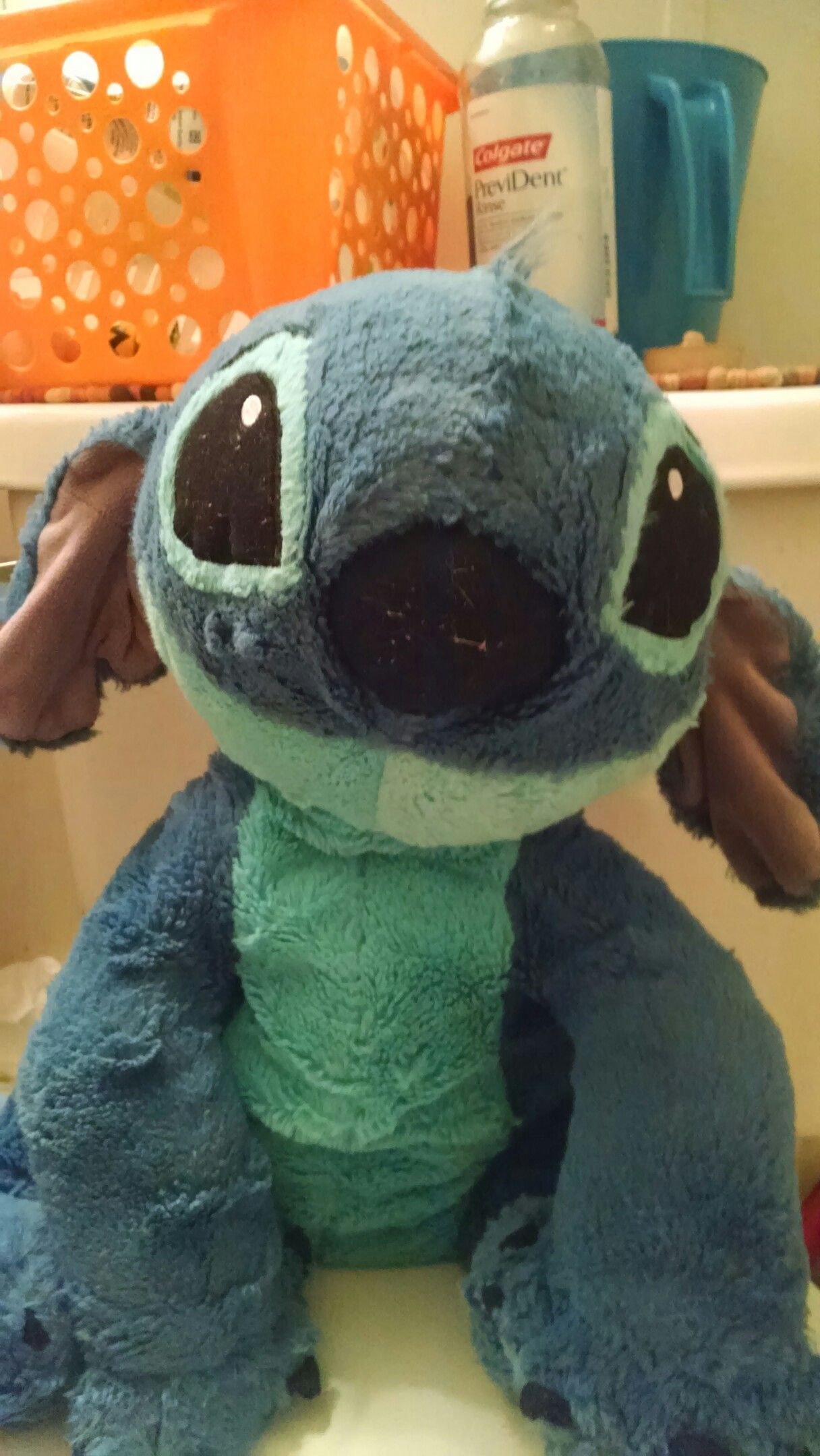 This stuff animal is found at Disney world Orlando Florida. Join me and get one