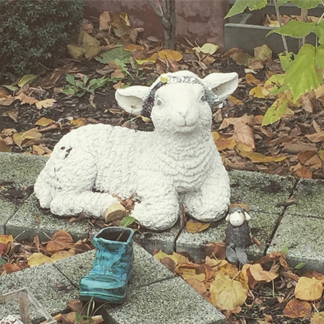 Gartendeko Berlin, bin ich schön? . . . . #gartenzwerg #schaf #rixdorf #berlin #garden, Design ideen