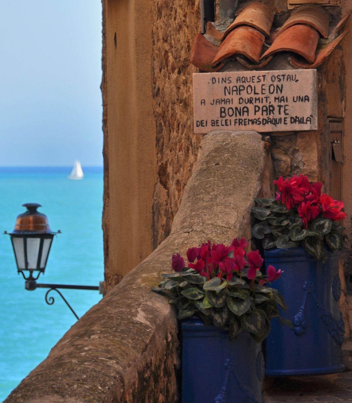 Napoleon snark in Antibes