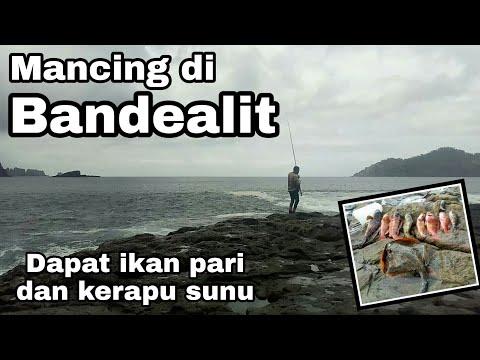 Meme Mancing Ikan Blog Meme Terbaru Memes Wallpaper Outdoor