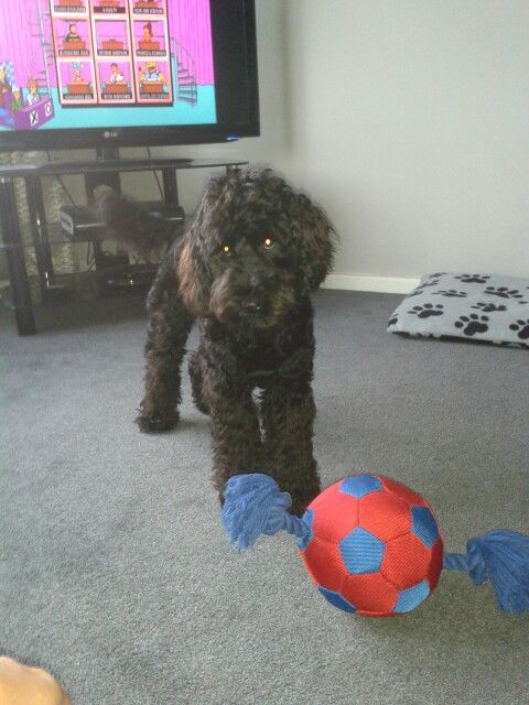 And this is my ball.