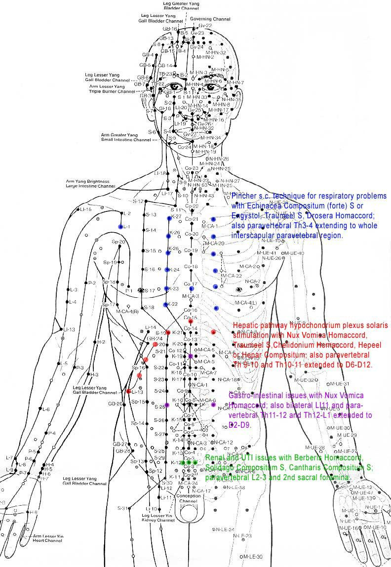Pin by Randall James on Diagrams | Pinterest | Acupuncture, Qi