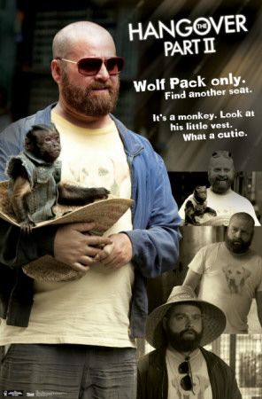 Hangover 2 - Quotes Poster