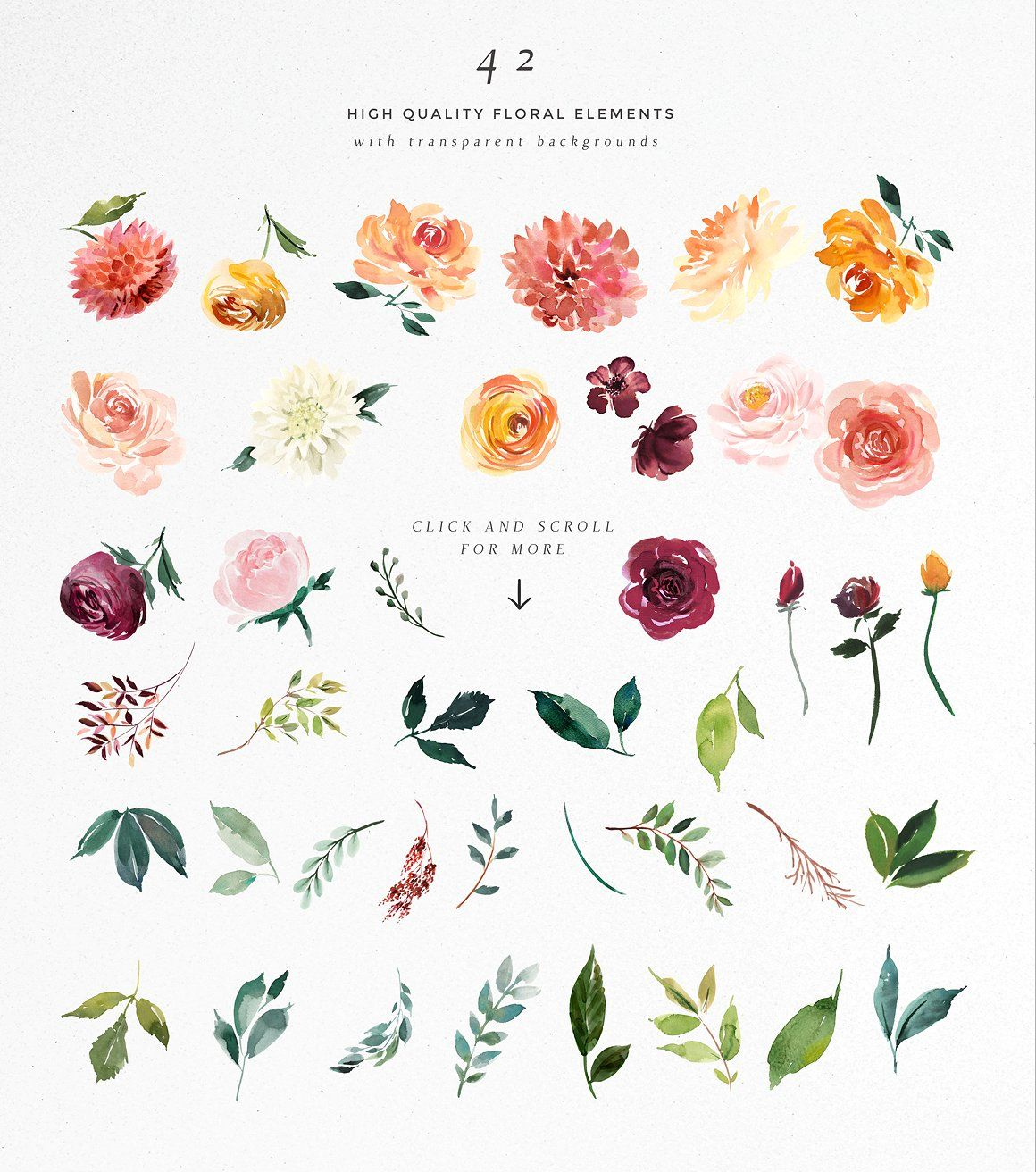 Watercolor Flower Clipart -Paprika by Twigs and Twine on @creativemarket