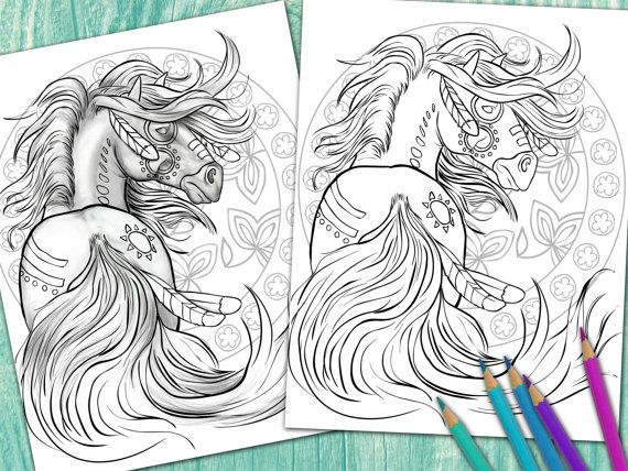 Items Similar To Adult Coloring Book Page From For Adults Horse Equine Art Colouring Download On Etsy