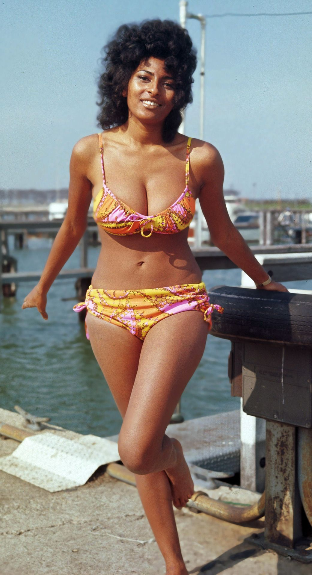 Bikini Pam Grier nude photos 2019