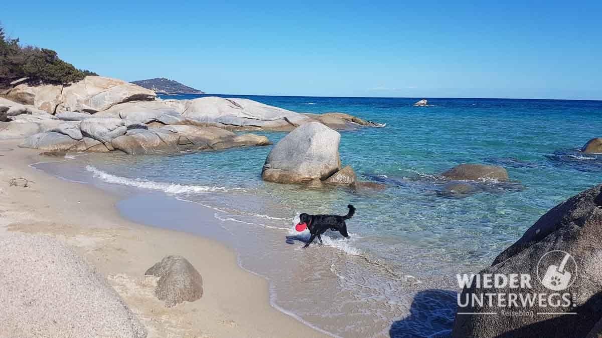 Hund sardinien mit erfahrungen urlaub Camping auf