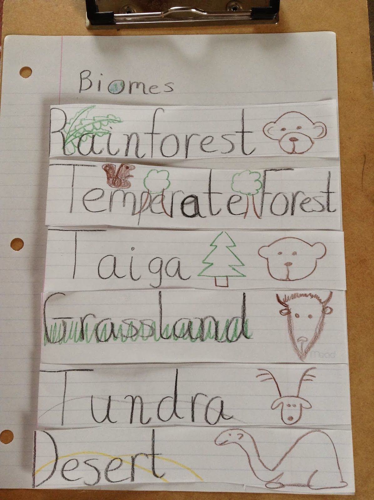 A Foldable On Biomes For The Science Notebook In