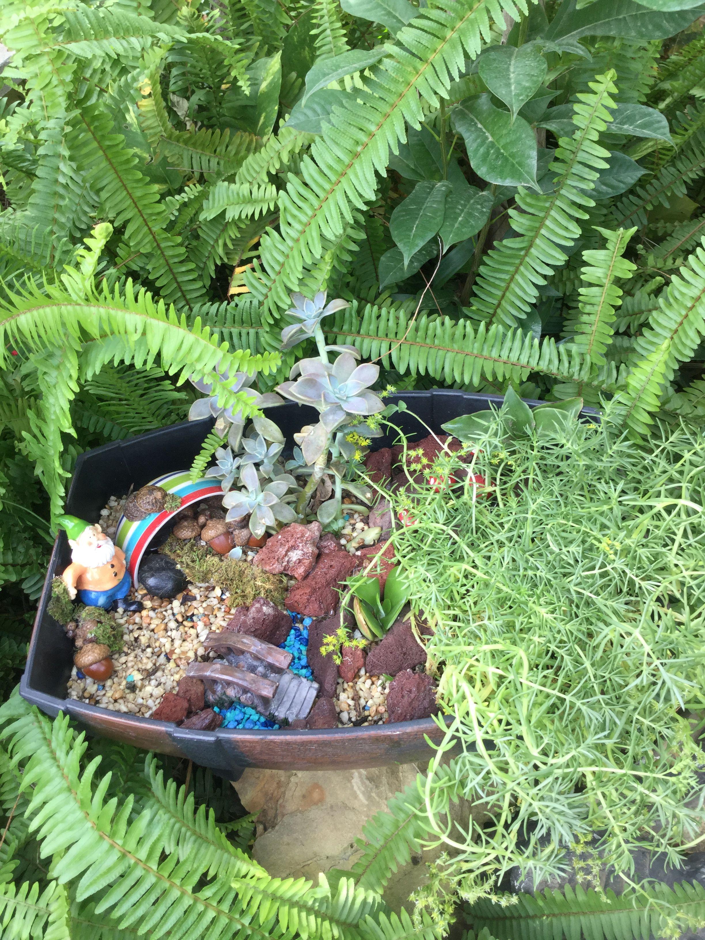Medium Of Miniature Gnome Garden Ideas