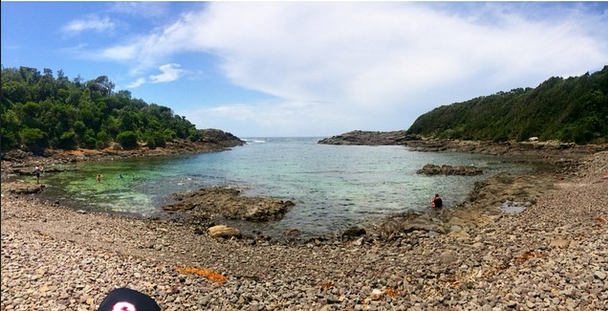 Bushrangers Bay, Bass Point (good for snorkeling ...