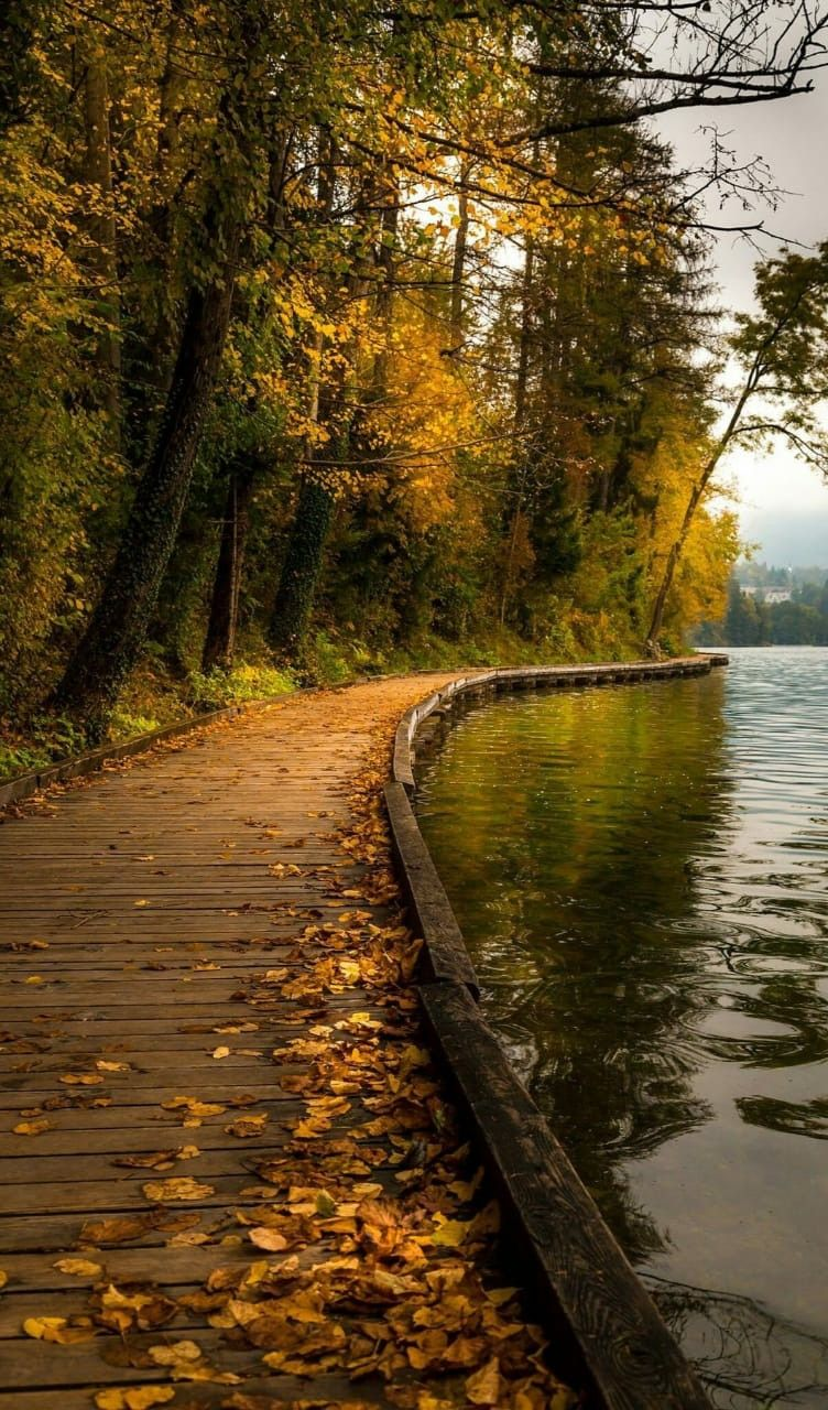 Place In Mumbai In 2020 Landscape Photography Autumn Scenery Nature Pictures