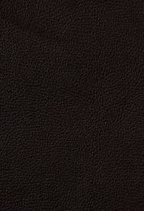 Chocolate brown leather- more neutral than than the lighter browns, which tend to have more warm/ red tones