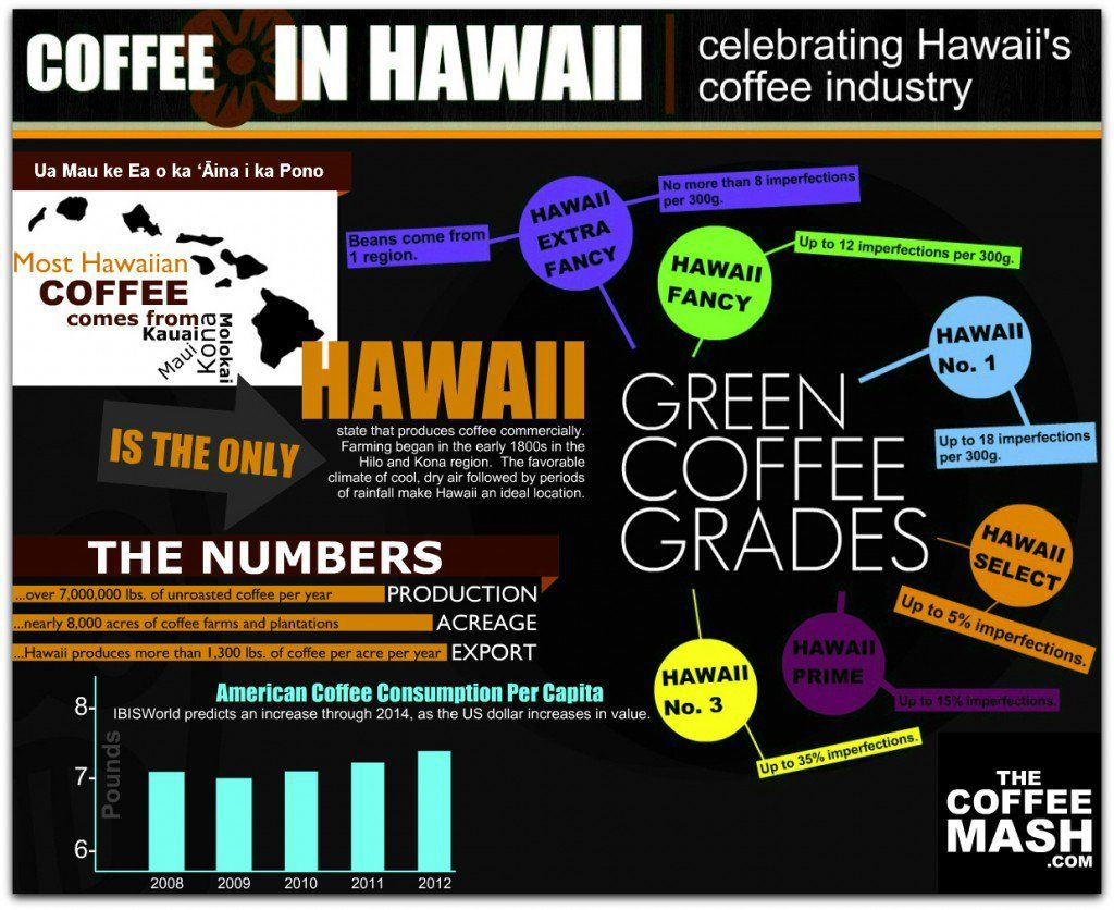 Coffee Visualized in 27 Strong Infographics Infographic