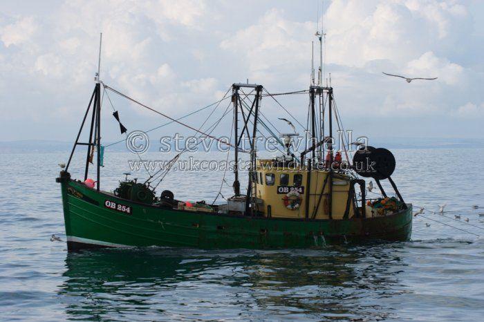 Small fishing trawler trawler tags trawler trawling for Small fishing net