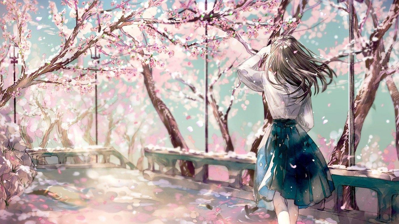 Anime Sakura 1366x768 Poisk V Google Risunki Devushki Iz Anime
