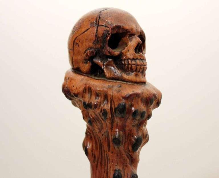 19th Century Skull Walking Stick