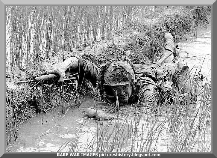 An US soldier lies low in a paddy field as the Vietcong fire...