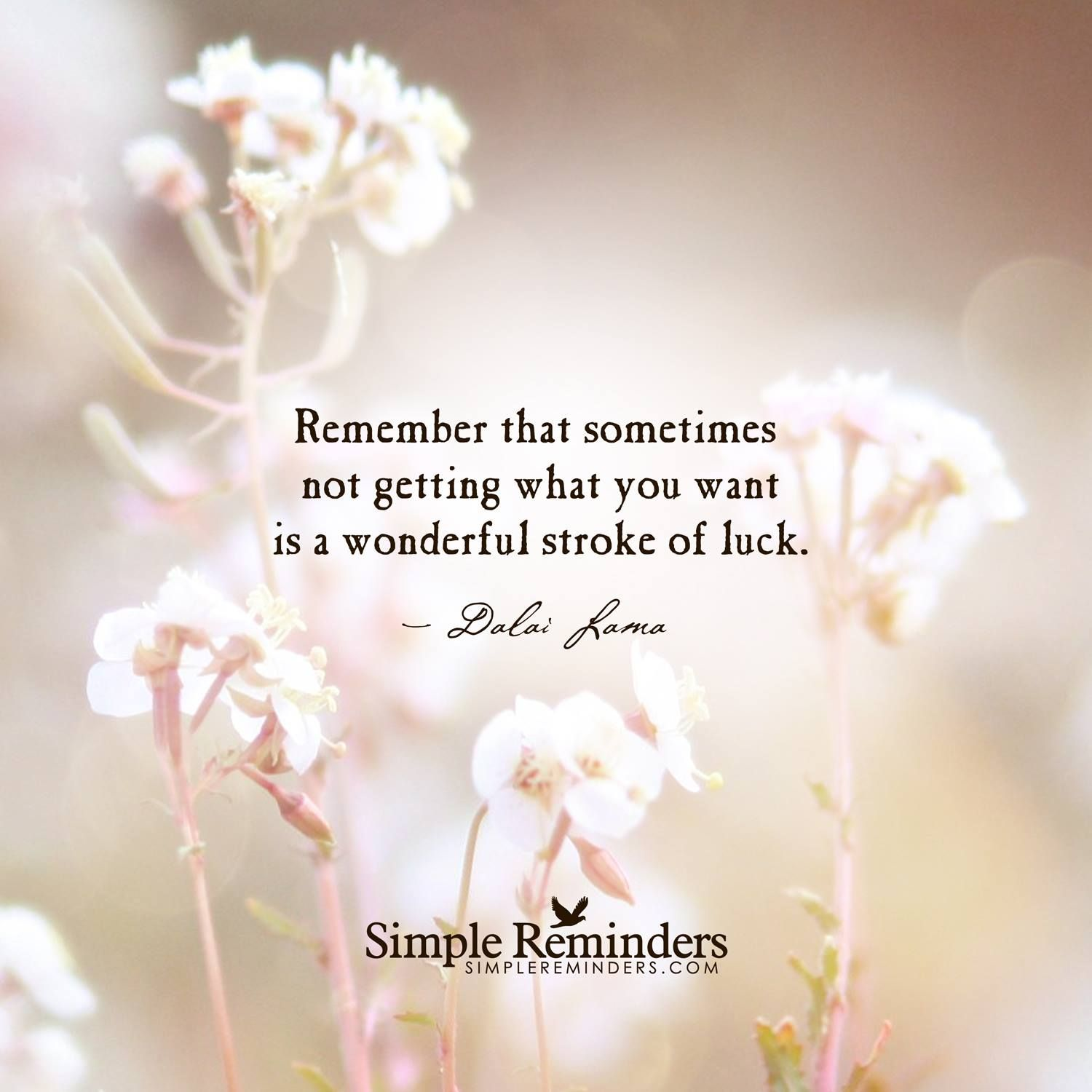 Remember That Sometimes Not Getting What You Want Is A Wonderful