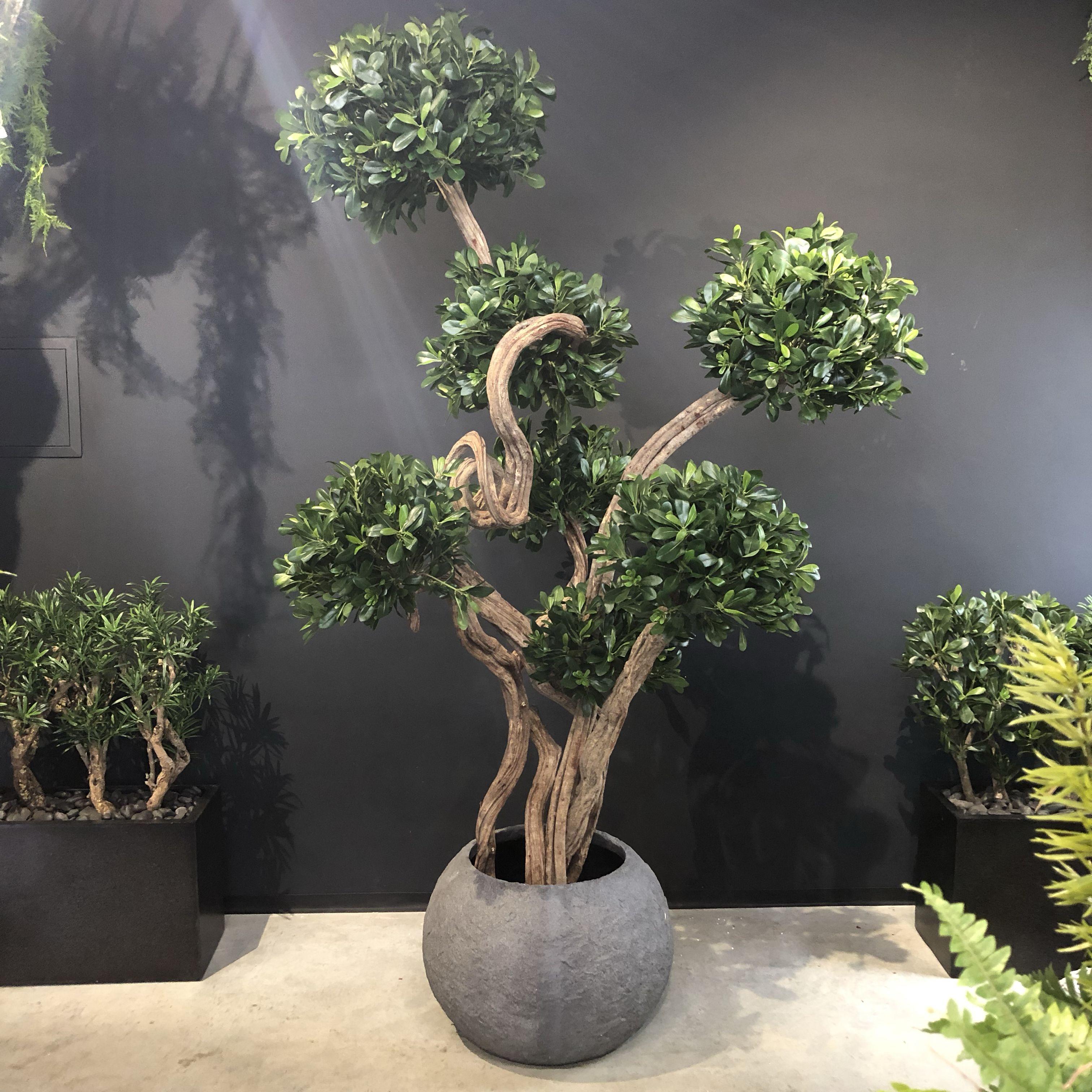 #künstlicher #Bonsai von #Bellaplanta #innovative Raumgestaltung #kunstdekobaum #unikat #artificialtree #kunstbaum #interiordesign