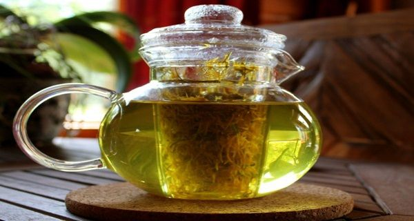 Amazing Herb That Kills Cancer Cells in 48 Hours – 100 Times More Effective Than Chemotherapy