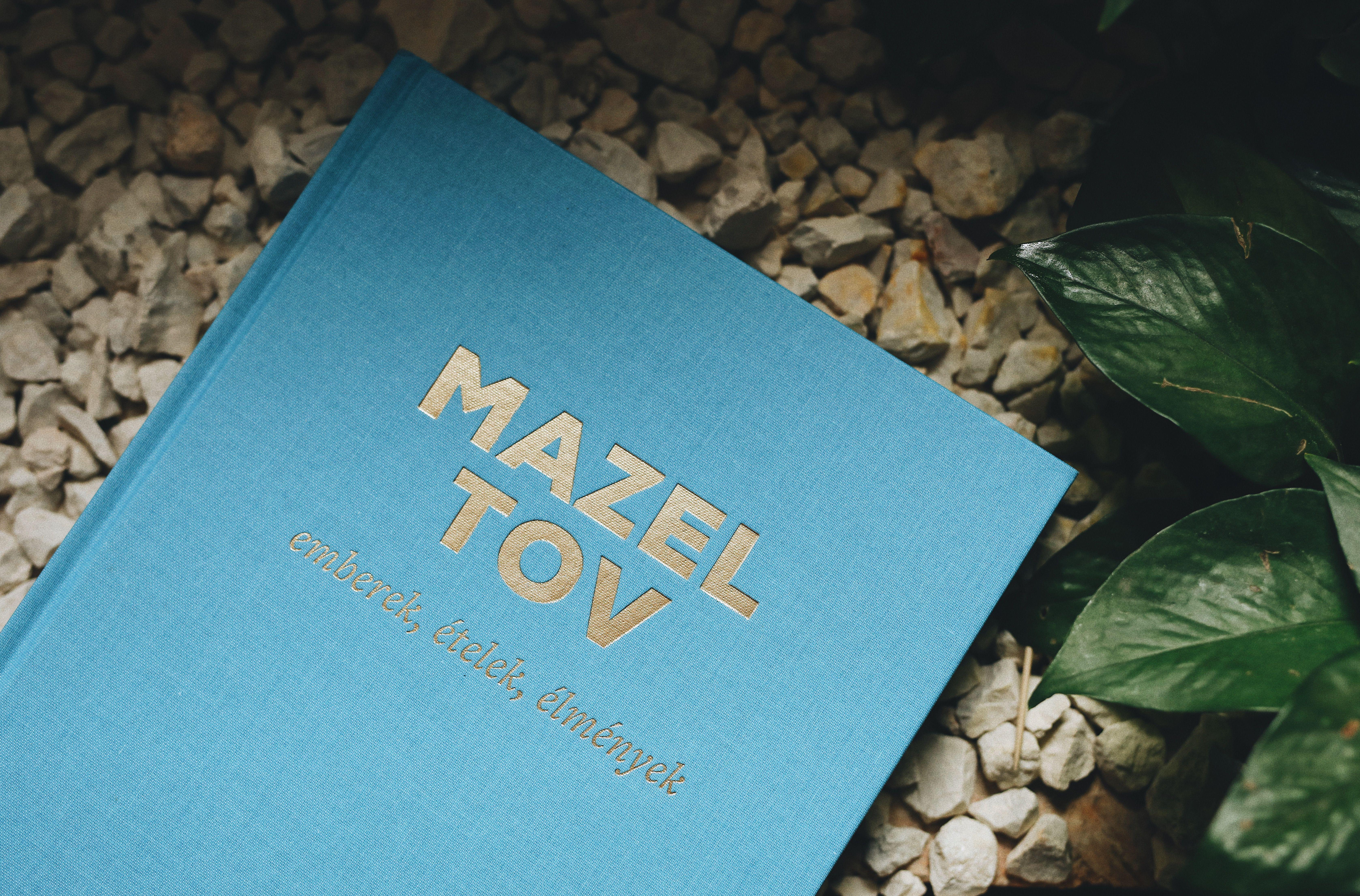 Mazel Tov Cookbook Mazel Tov Cookbook Book Cover