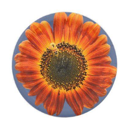 Sunflower and Bee Paper Plate - summer gifts season diy template ideas  sc 1 st  Pinterest & Sunflower and Bee Paper Plate - summer gifts season diy template ...