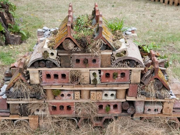 Use old bricks and roof panels lying around and build an insect palace in your gardens.*****Follow our unique garden themed boards at www.pinterest.com/Earthwormtec ***** Follow us on www.facebook.com/earthwormtec for great organic gardening tips #insecthouse #DIY